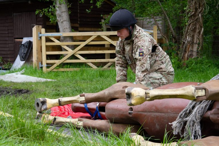 Household Cavalary 26.05.21 16