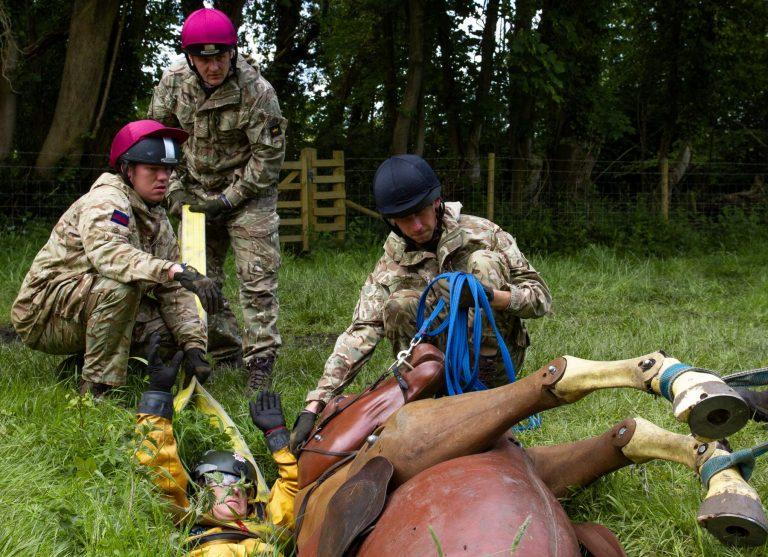 Household Cavalary 26.05.21 33 (1)